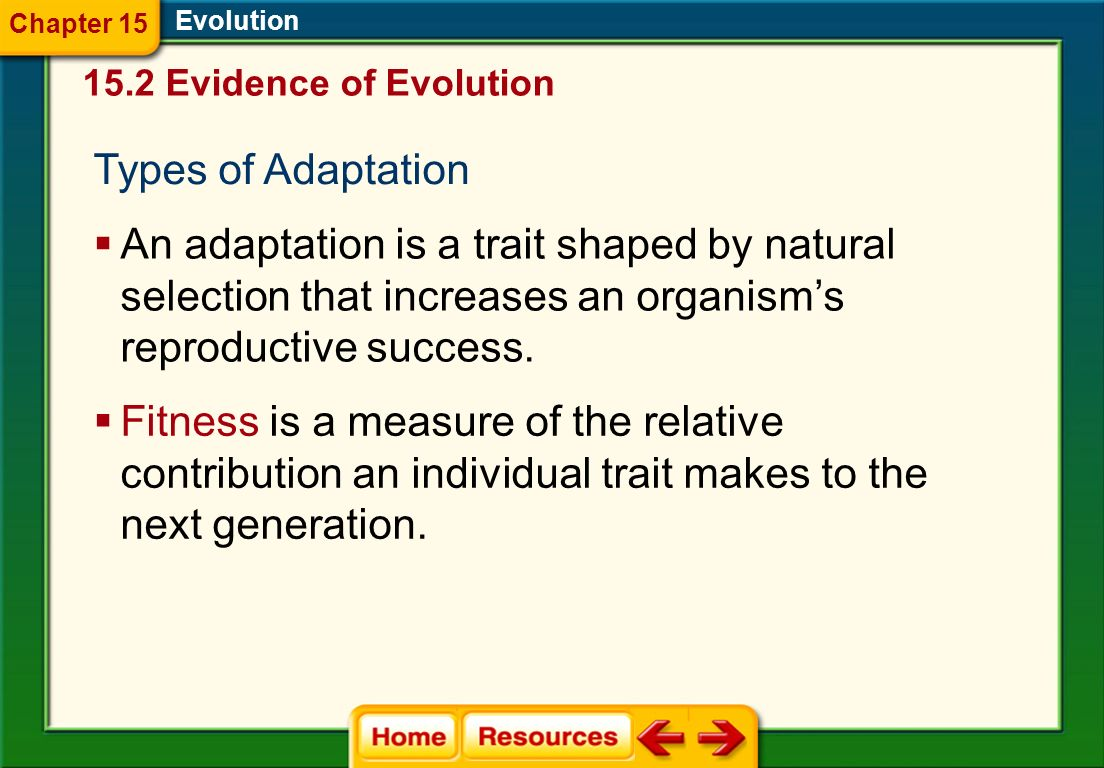 Chapter 15 Evolution Evidence of Evolution. Types of Adaptation.