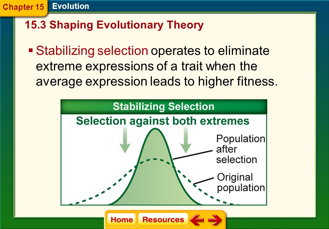 Chapter 15 Evolution Shaping Evolutionary Theory.