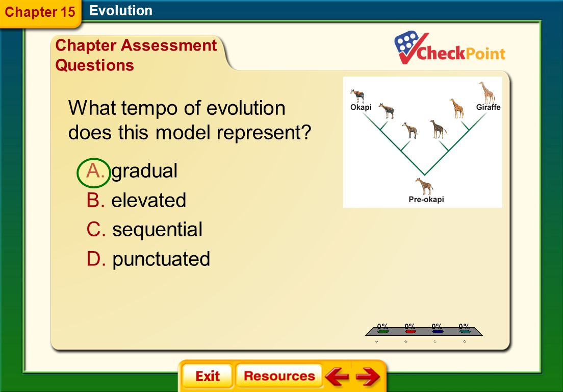 What tempo of evolution does this model represent
