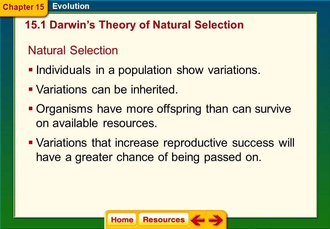 Individuals in a population show variations.