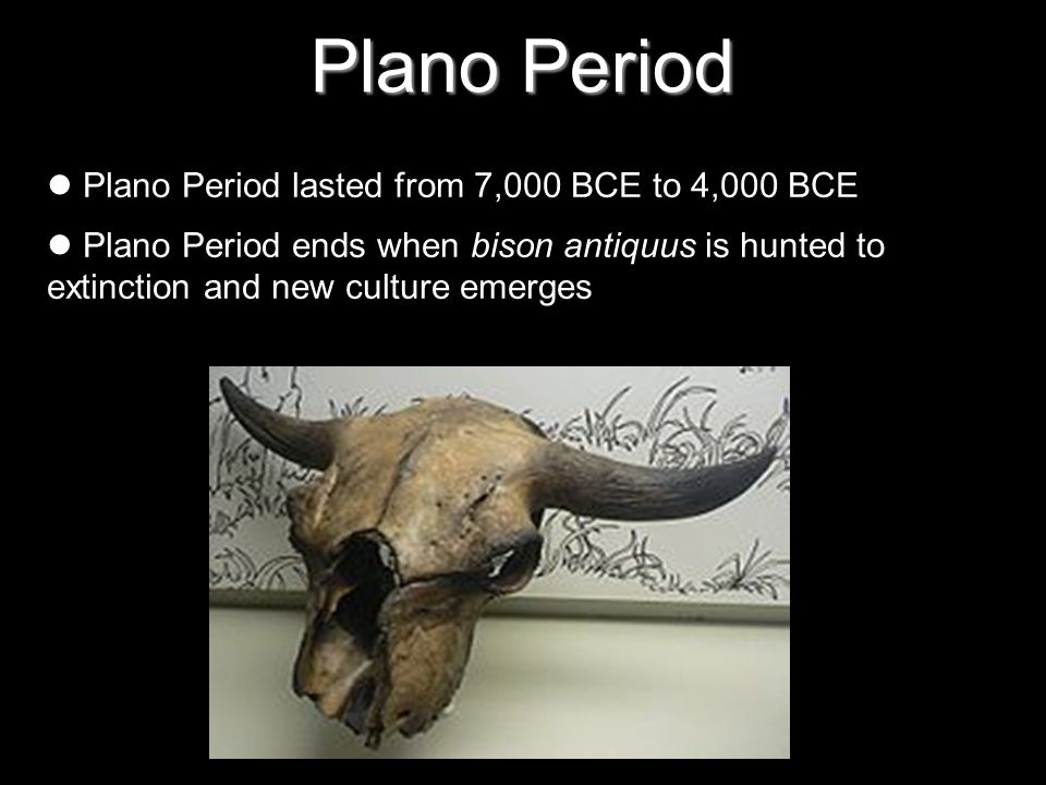 Plano Period Plano Period lasted from 7,000 BCE to 4,000 BCE