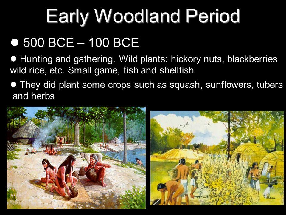 Early Woodland Period 500 BCE – 100 BCE