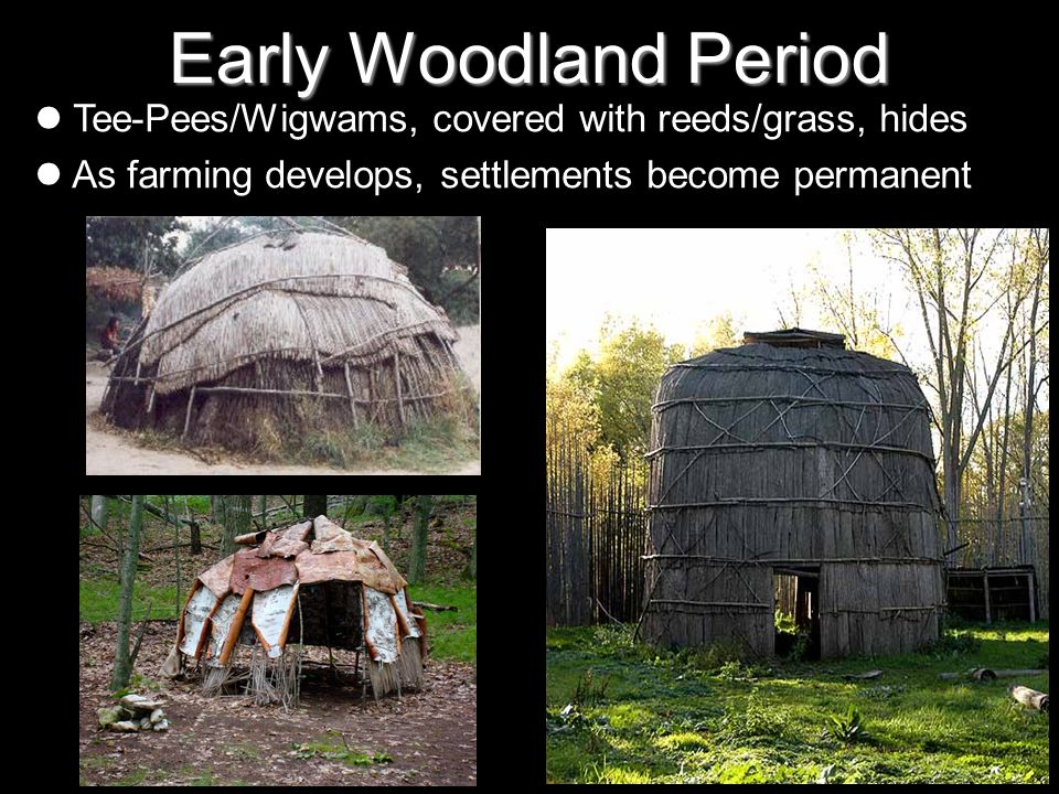 Early Woodland Period Tee-Pees/Wigwams, covered with reeds/grass, hides. As farming develops, settlements become permanent.