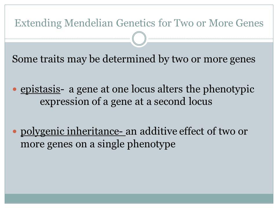 Extending Mendelian Genetics for Two or More Genes