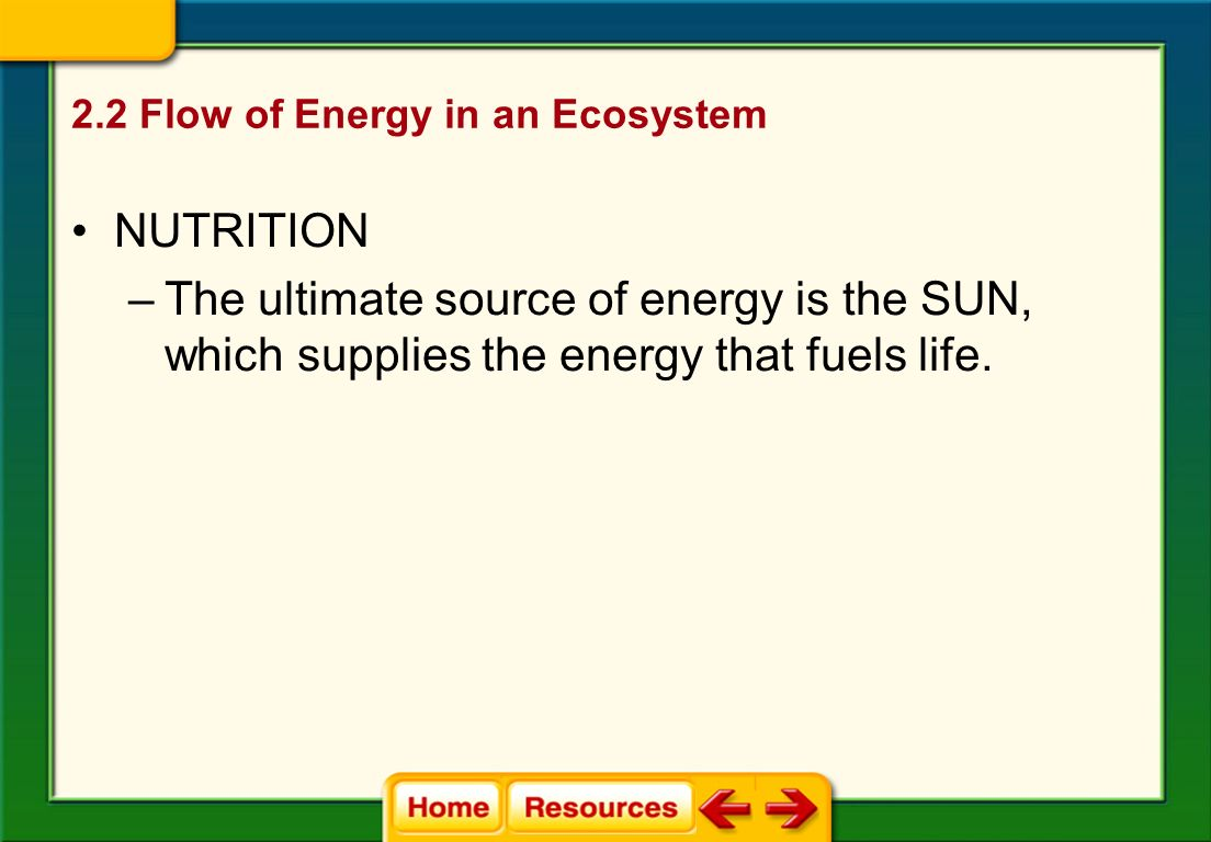 2.2 Flow of Energy in an Ecosystem