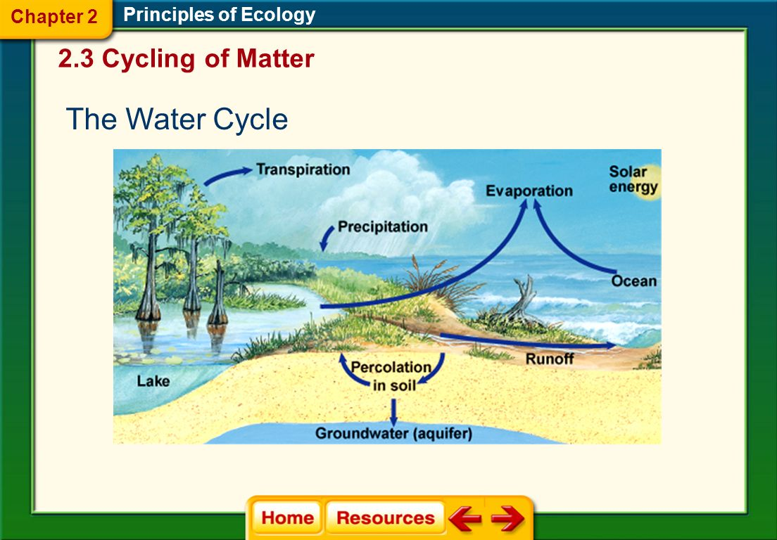 worksheet Principles Of Ecology Worksheet Answers chapter 2 principles of ecology ppt video online download 25 3 cycling matter the water cycle