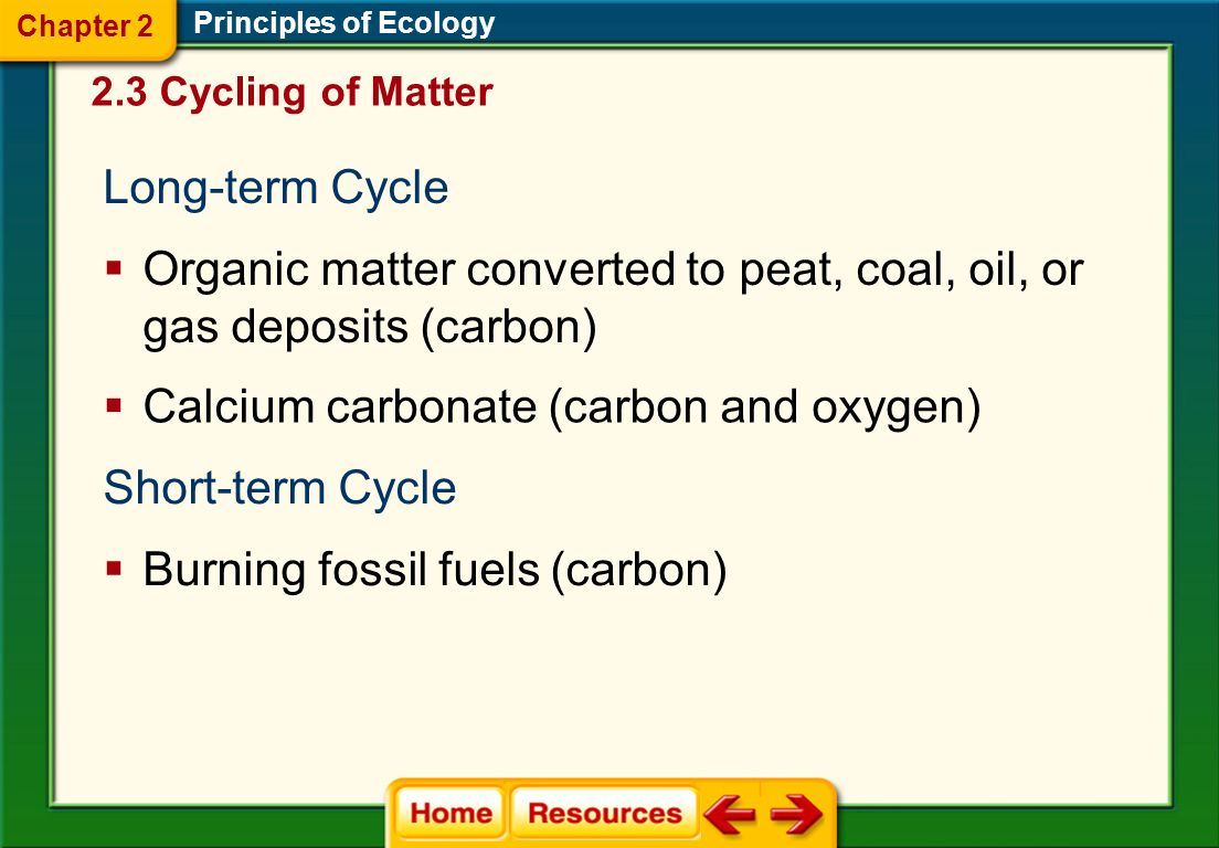 Organic matter converted to peat, coal, oil, or gas deposits (carbon)
