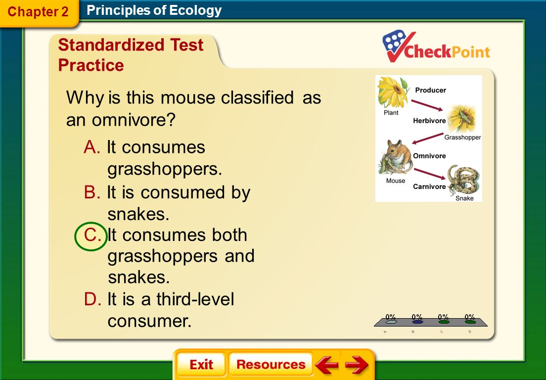 Why is this mouse classified as an omnivore