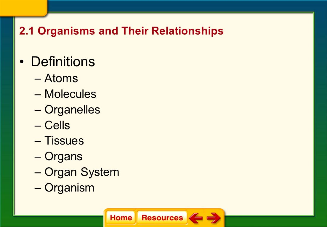 2.1 Organisms and Their Relationships