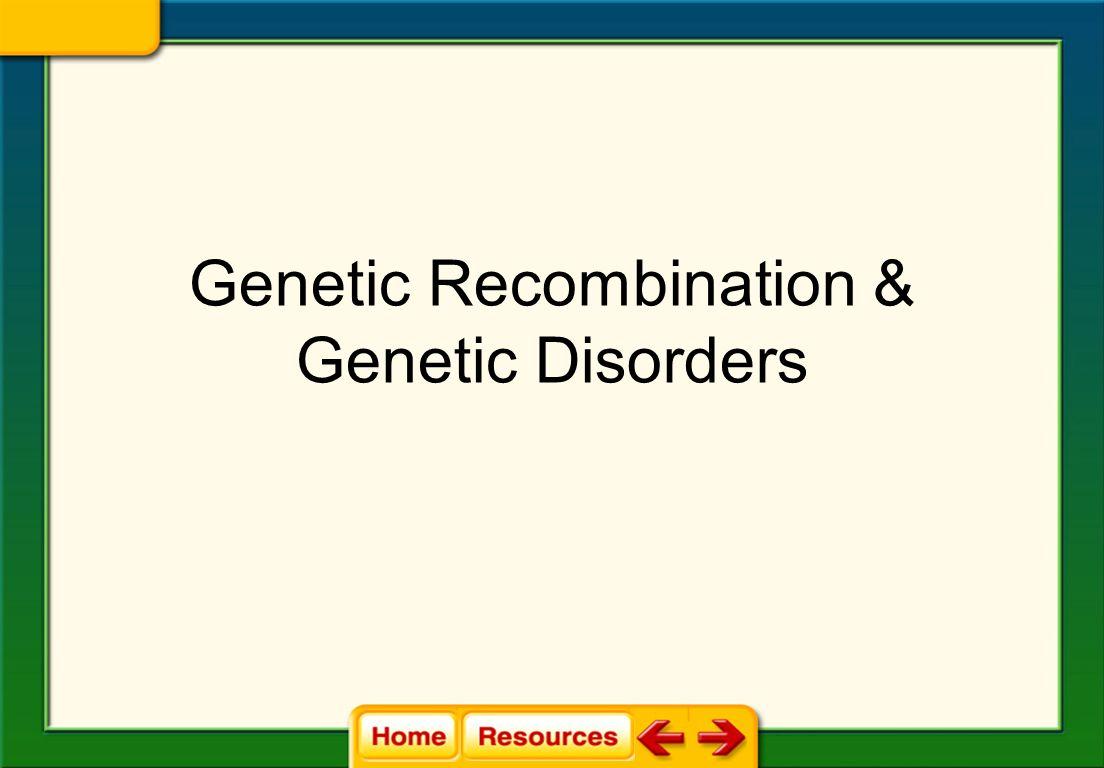 Genetic Recombination & Genetic Disorders