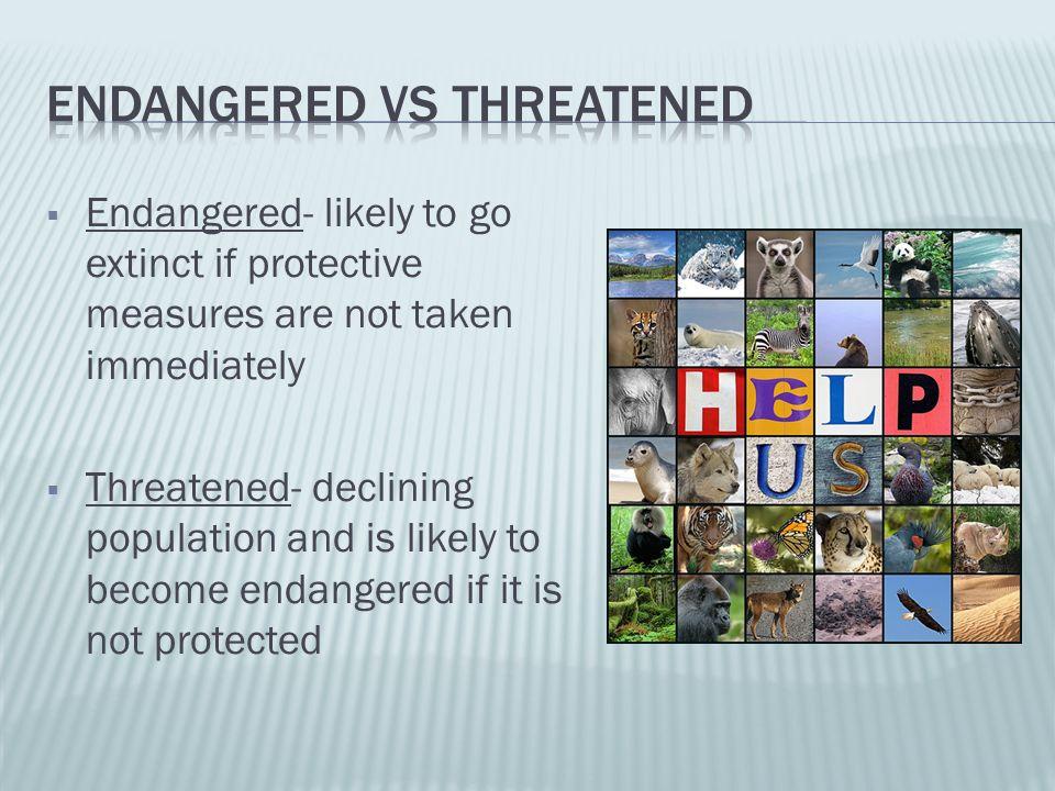 Endangered vs threatened