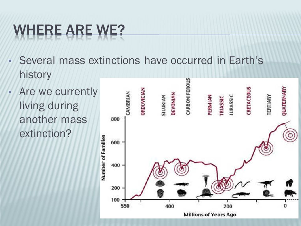 Where are we Several mass extinctions have occurred in Earth's history.