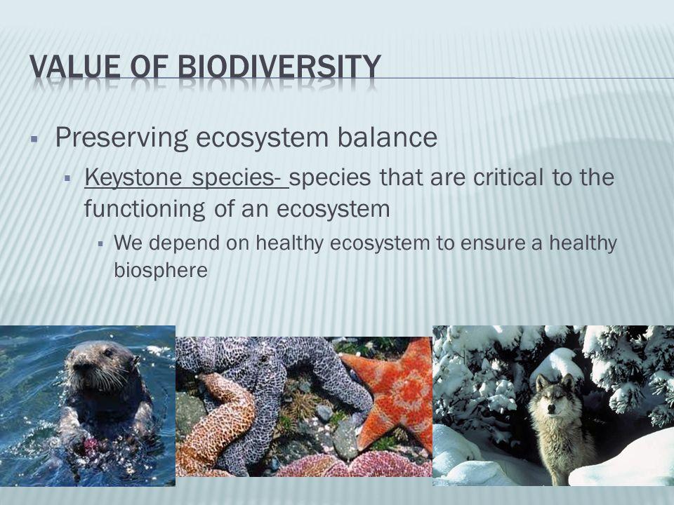 Value of biodiversity Preserving ecosystem balance