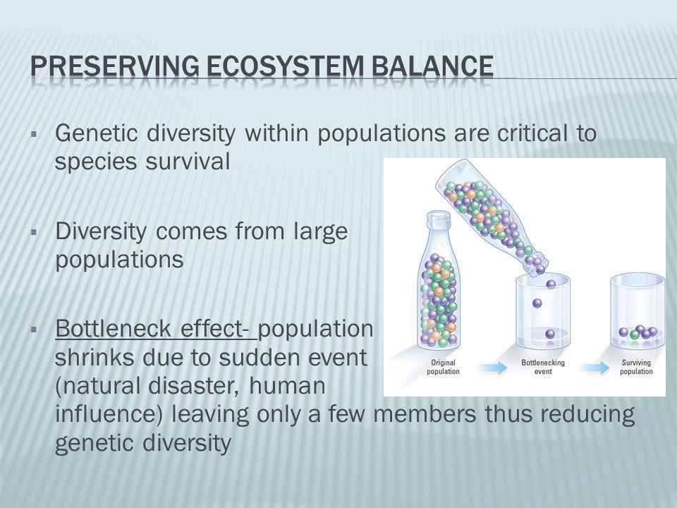 Preserving ecosystem balance