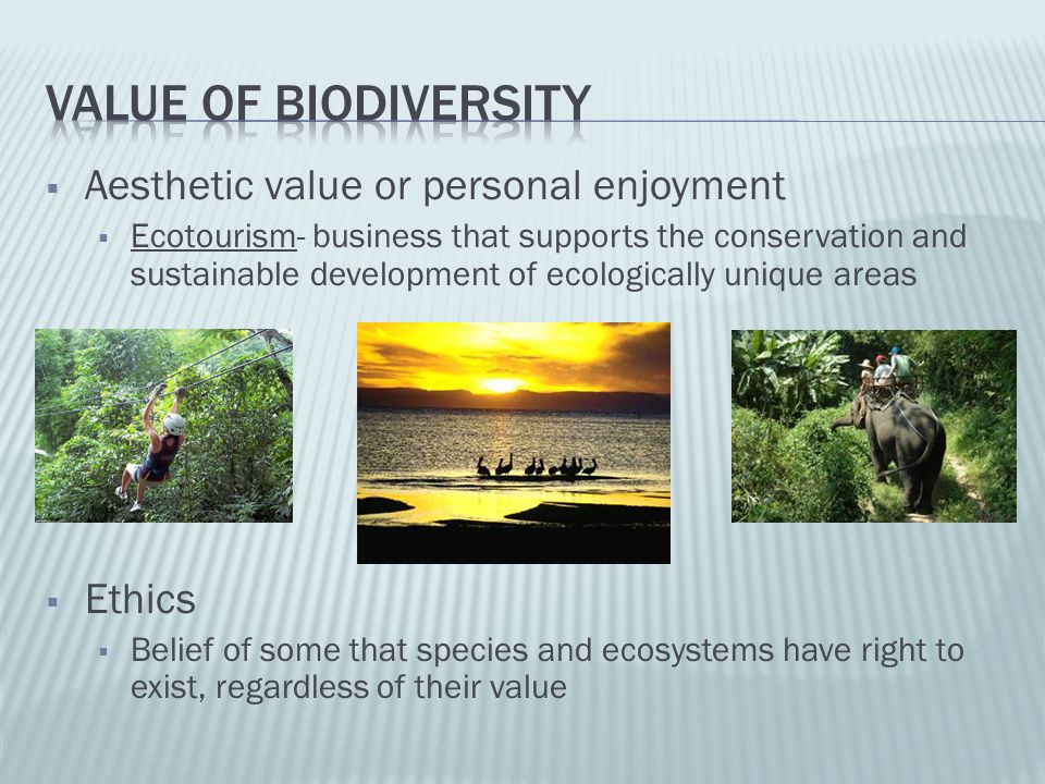 Value of biodiversity Aesthetic value or personal enjoyment Ethics
