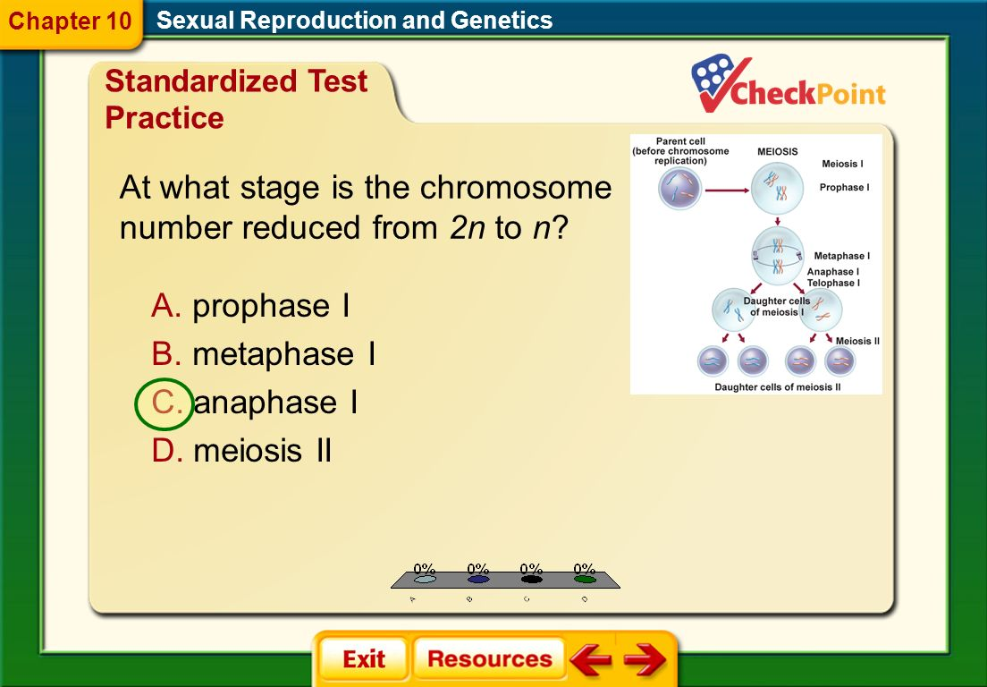 At what stage is the chromosome number reduced from 2n to n