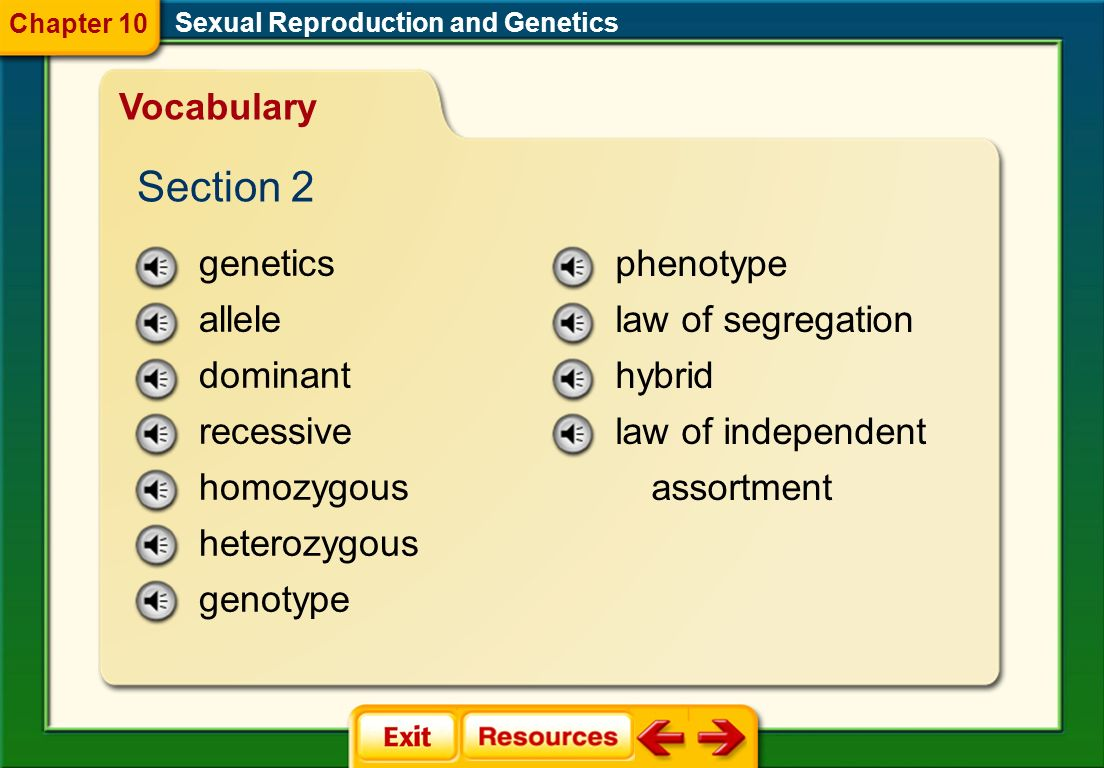 Section 2 Vocabulary genetics allele dominant recessive homozygous