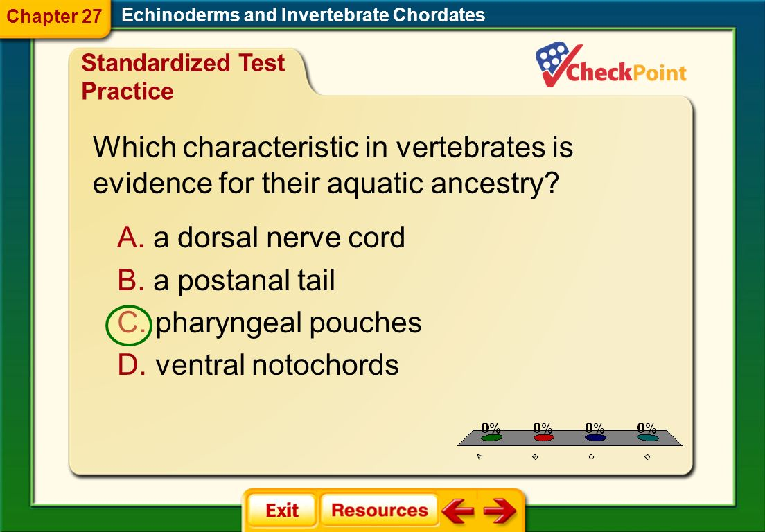 Which characteristic in vertebrates is