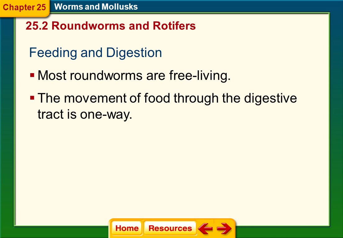 Most roundworms are free-living.