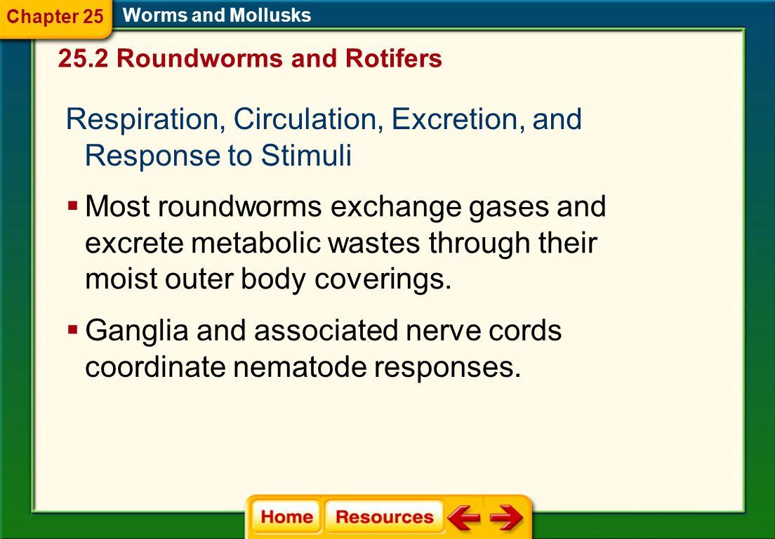 Respiration, Circulation, Excretion, and Response to Stimuli