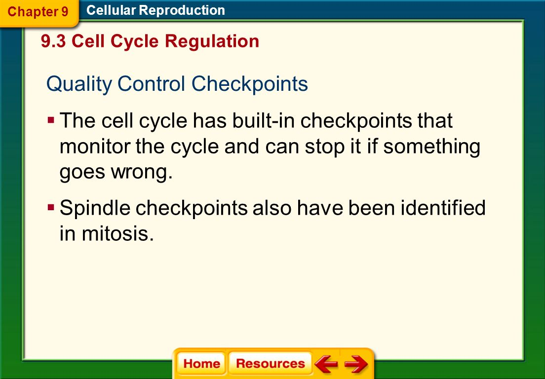 Quality Control Checkpoints
