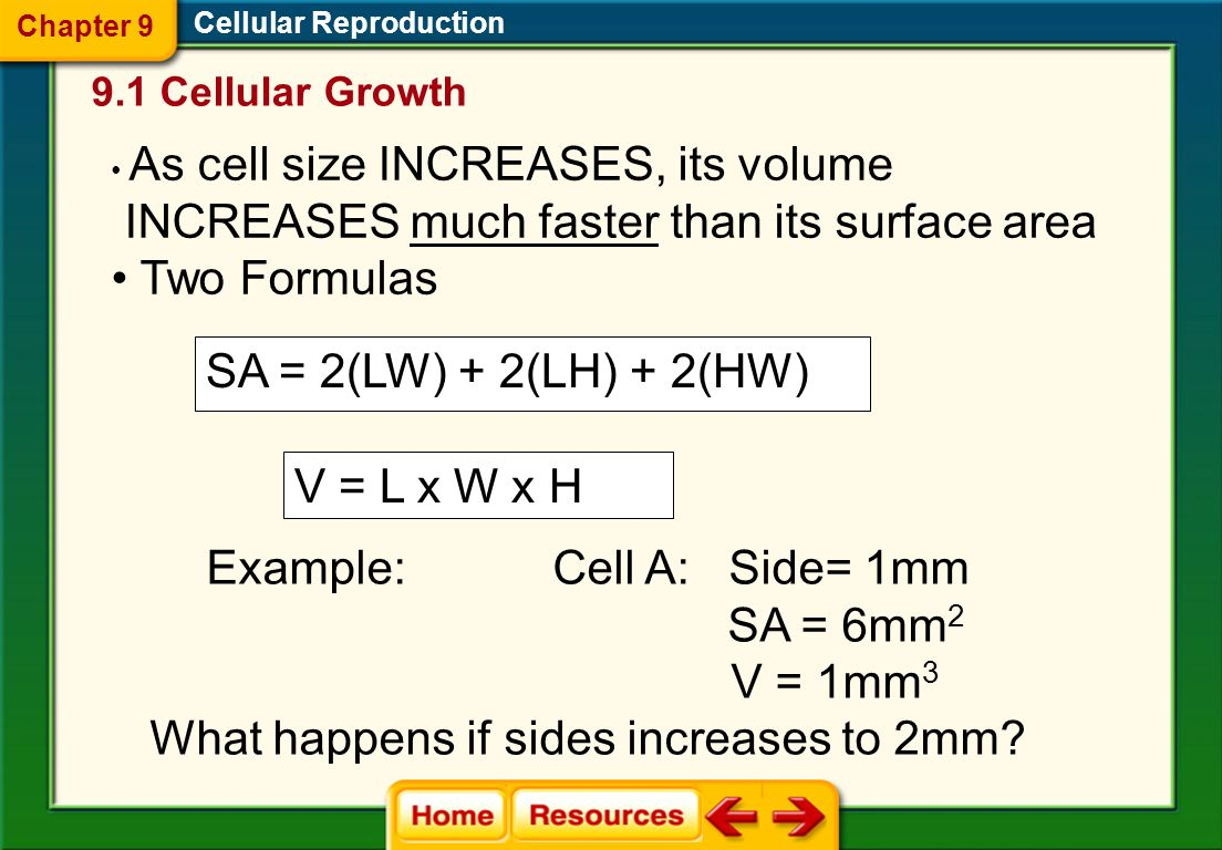 INCREASES much faster than its surface area Two Formulas
