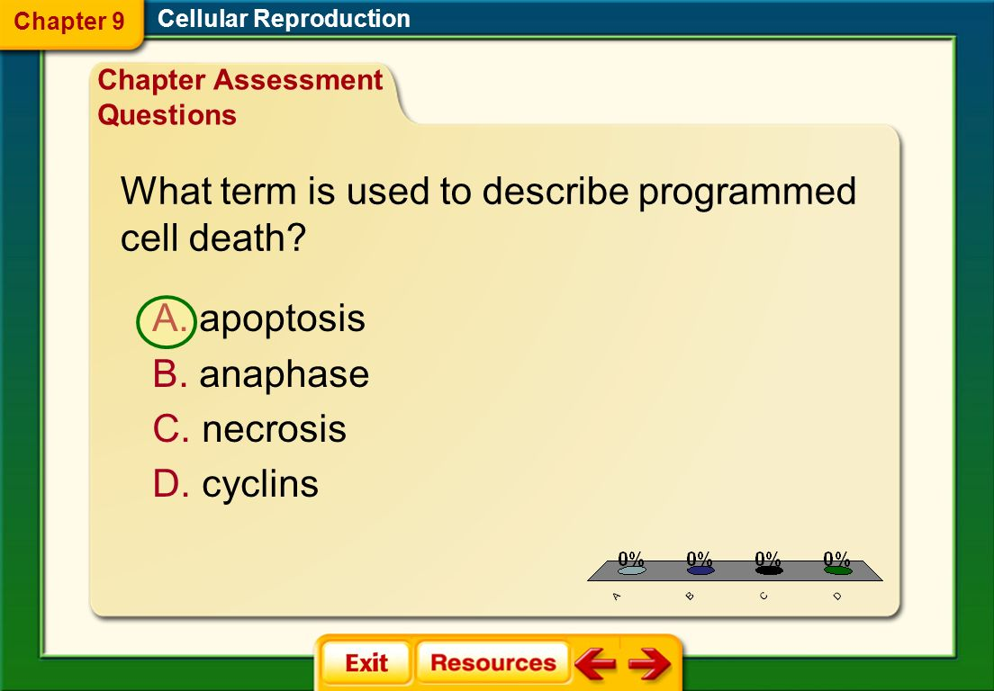 What term is used to describe programmed cell death
