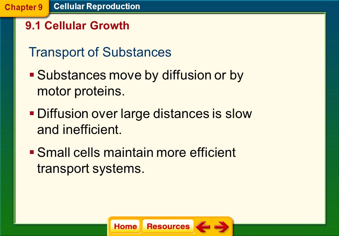 Transport of Substances
