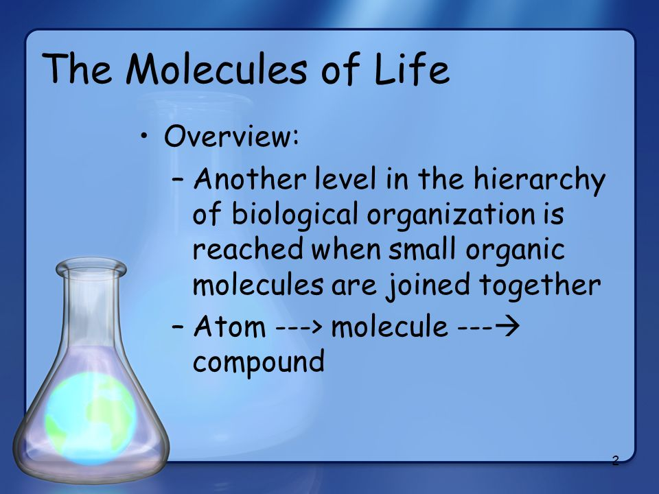 The Molecules of Life Overview: