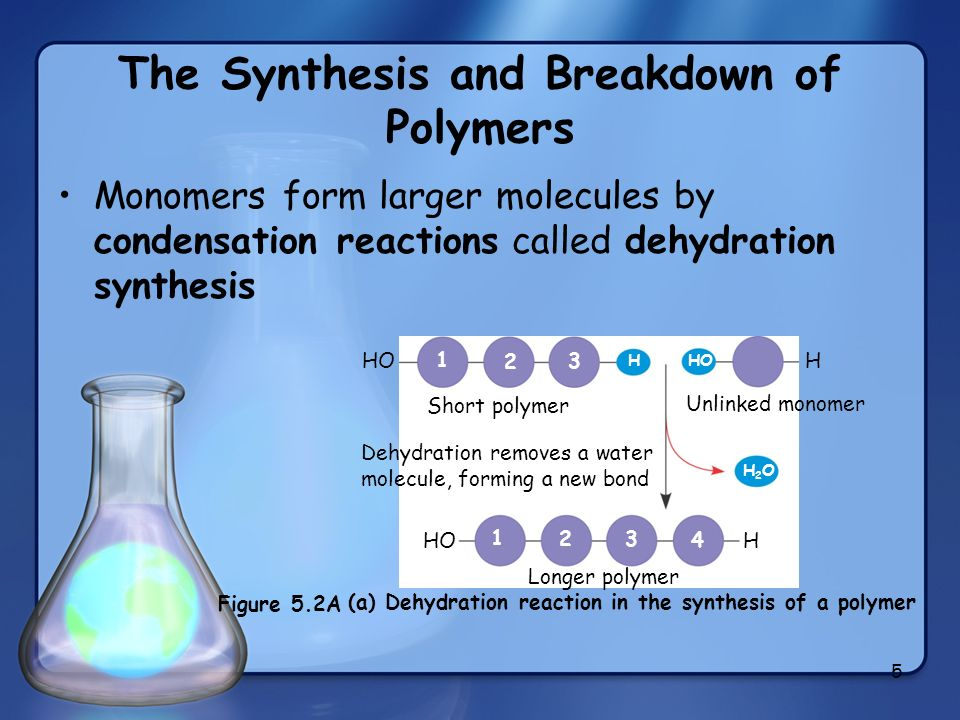 and sythesis of