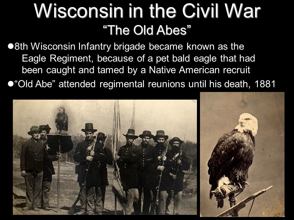 Wisconsin in the Civil War The Old Abes