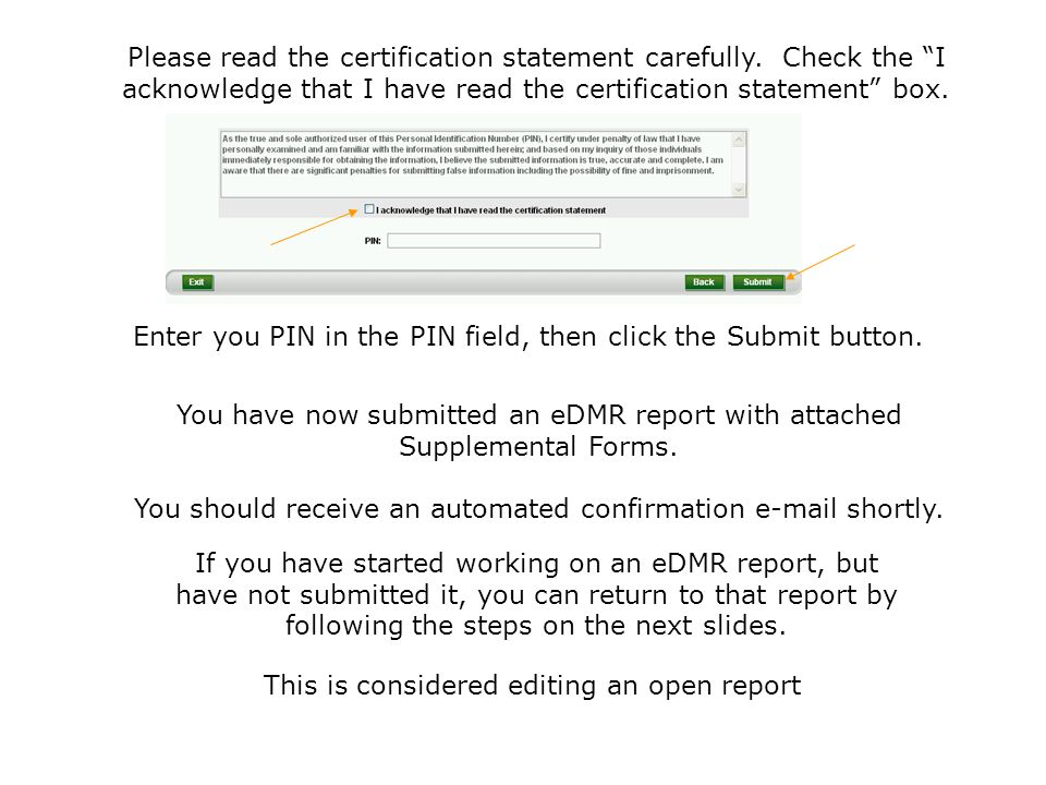 Enter you PIN in the PIN field, then click the Submit button.