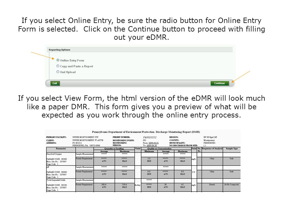 If you select Online Entry, be sure the radio button for Online Entry Form is selected. Click on the Continue button to proceed with filling out your eDMR.