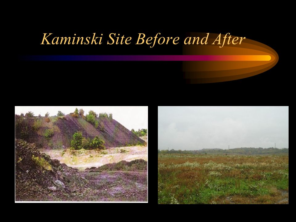 Kaminski Site Before and After
