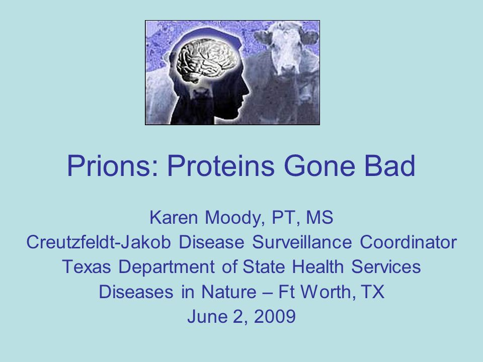 the mysteries surrounding the creutzfeldt jakob disease The next plague: prions are tiny, mysterious and frightening  a statement on  mad cow disease and the safety of the us beef supply from.