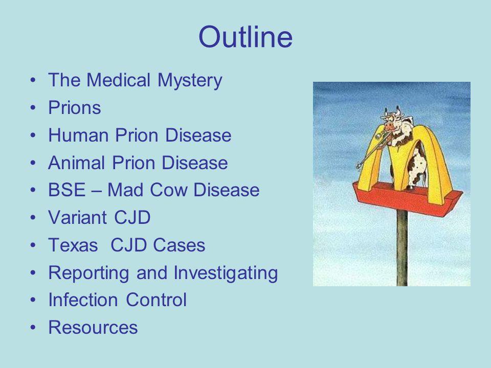 prion diseases essay
