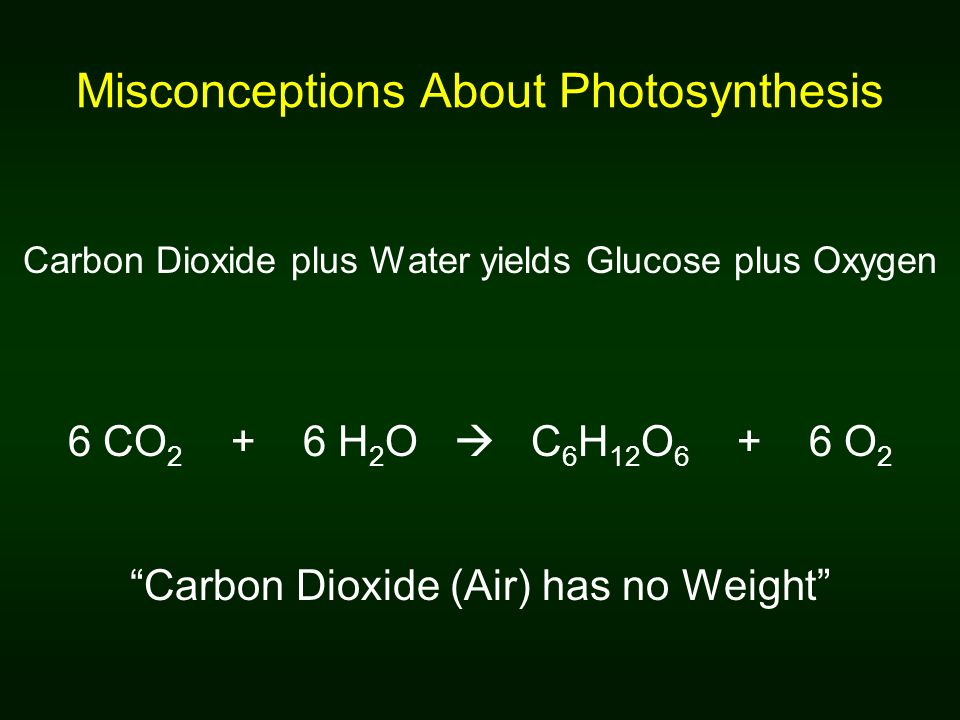 Misconceptions About Photosynthesis