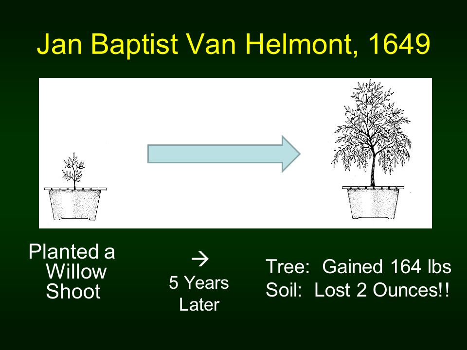 Jan Baptist Van Helmont, 1649