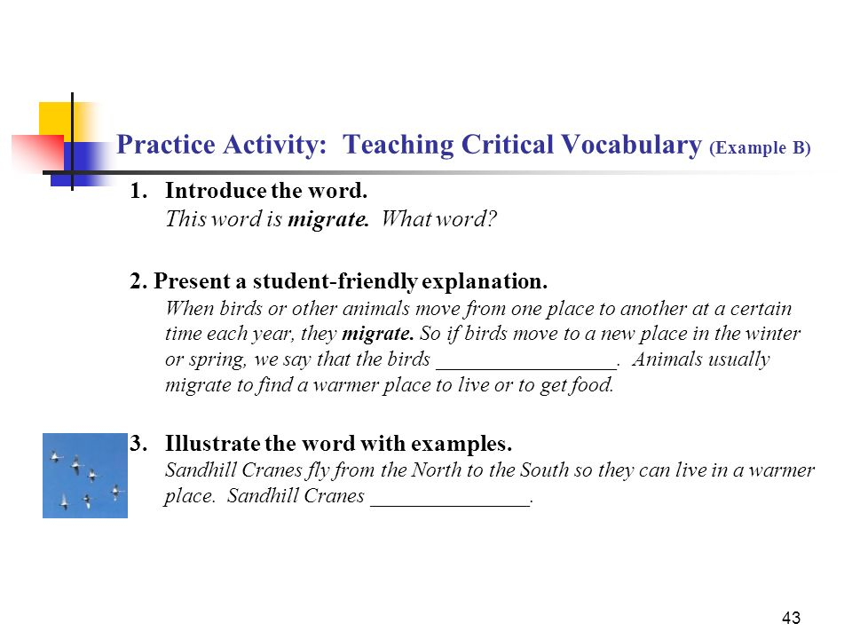 Practice Activity: Teaching Critical Vocabulary (Example B)