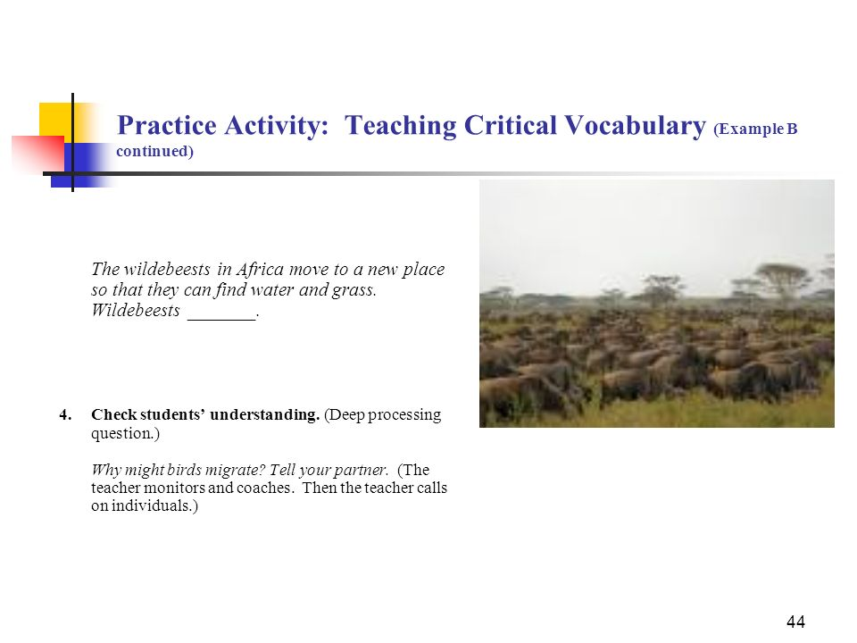 Practice Activity: Teaching Critical Vocabulary (Example B continued)