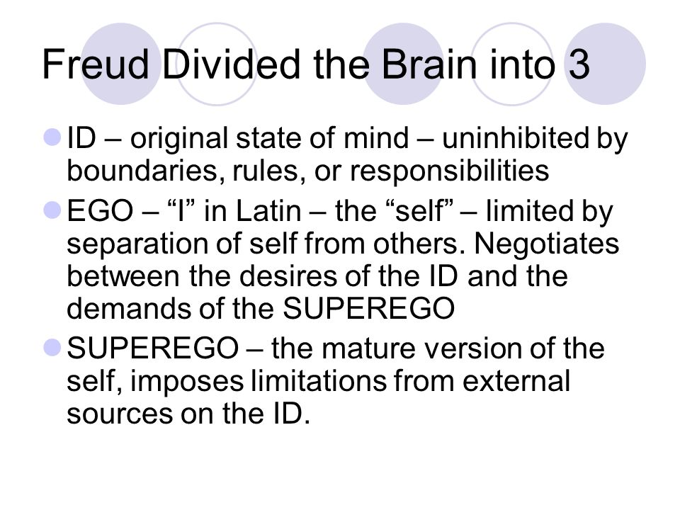 the divided mind pdf download