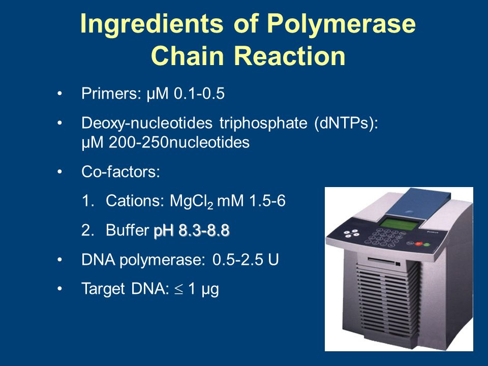 Ingredients of Polymerase Chain Reaction