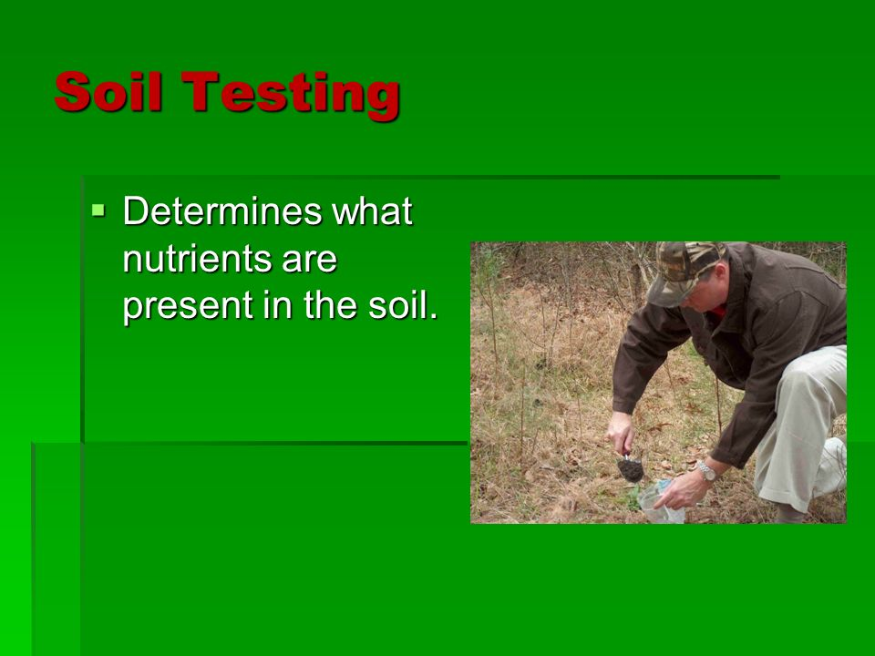 Media and soils chapter ppt video online download for Minerals present in soil