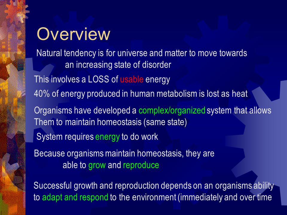 Overview Natural tendency is for universe and matter to move towards