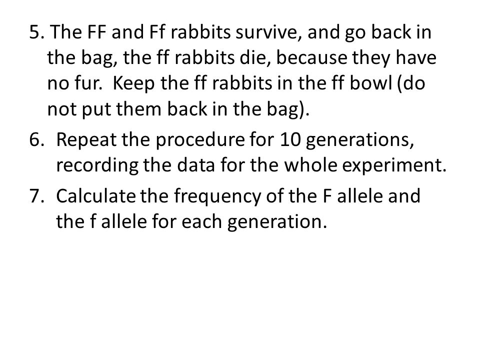 5. The FF and Ff rabbits survive, and go back in the bag, the ff rabbits die, because they have no fur. Keep the ff rabbits in the ff bowl (do not put them back in the bag).