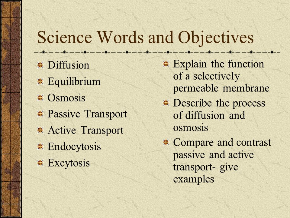 Science Words and Objectives