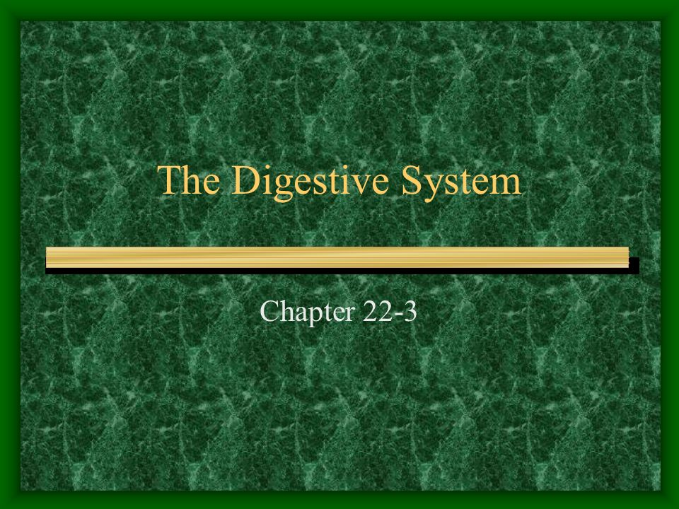 The Digestive System Chapter 22-3