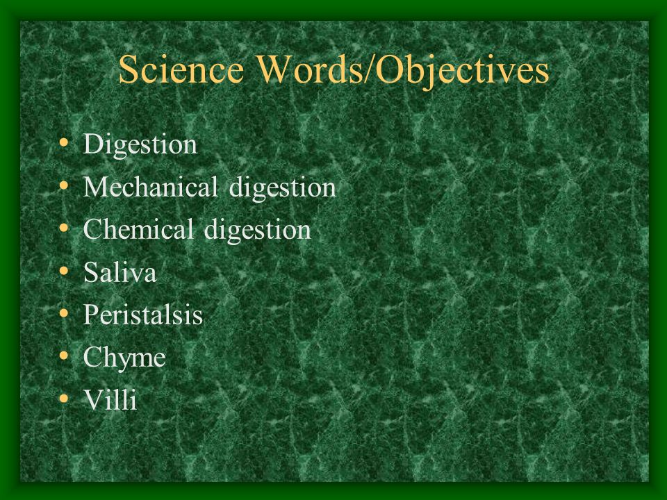Science Words/Objectives