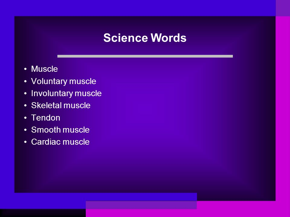 Science Words Muscle Voluntary muscle Involuntary muscle