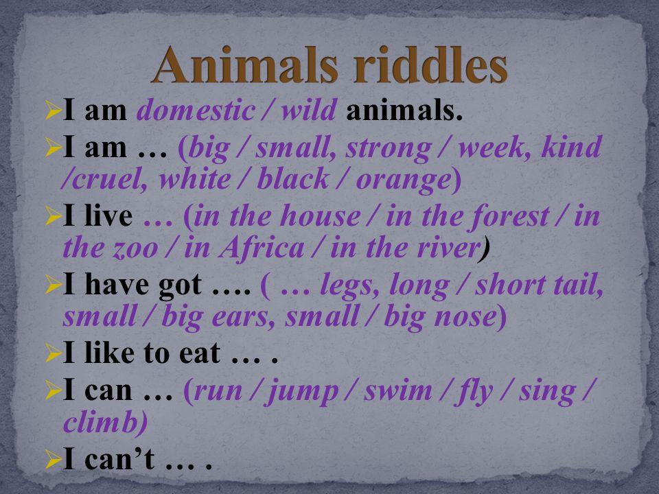 Animals riddles I am domestic / wild animals.